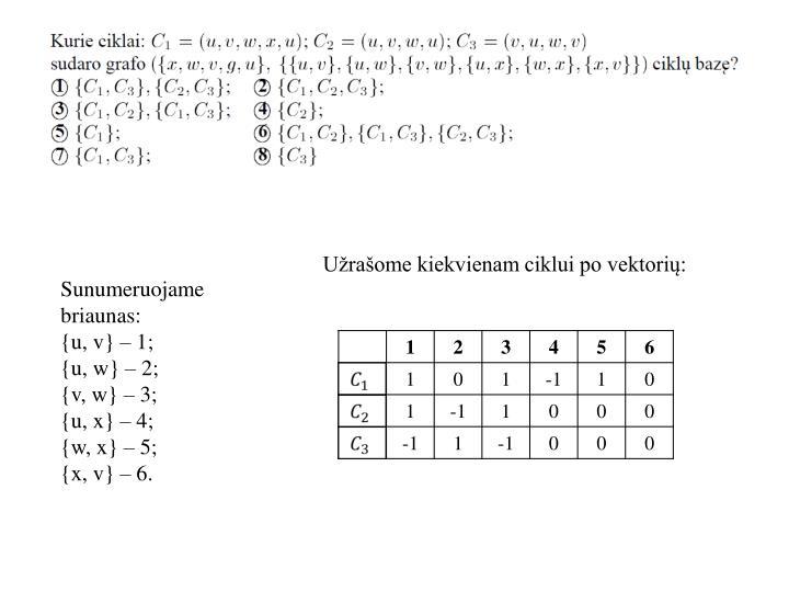 Užrašome kiekvienam ciklui po vektorių: