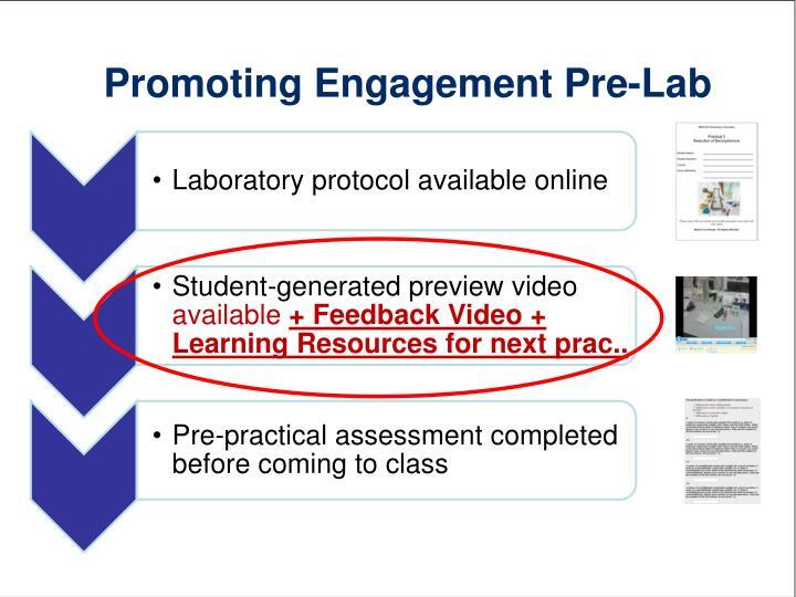Promoting Engagement Pre-Lab