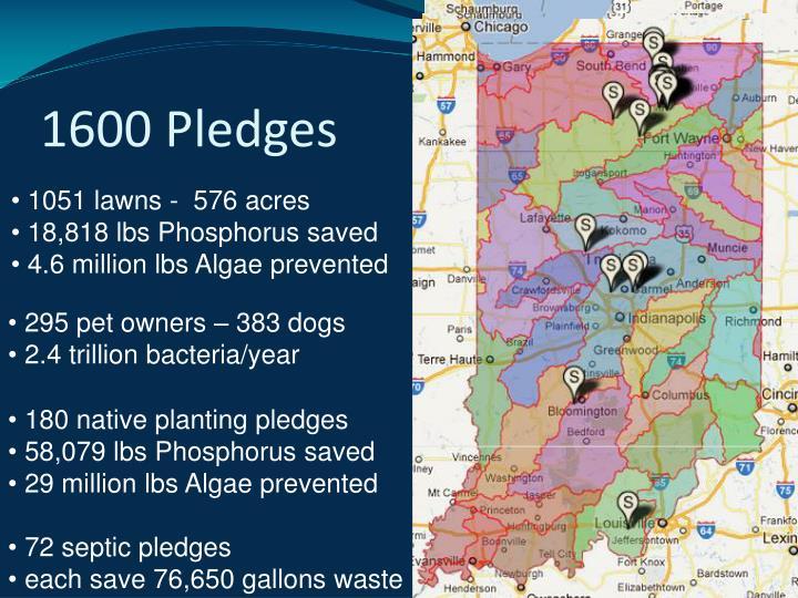 1600 Pledges