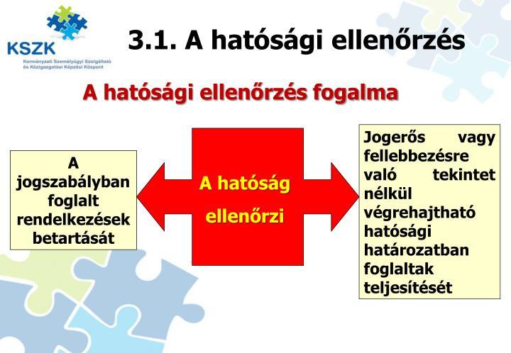3.1. A hatósági ellenőrzés