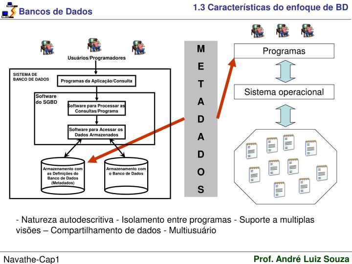 1.3 Características do enfoque de BD