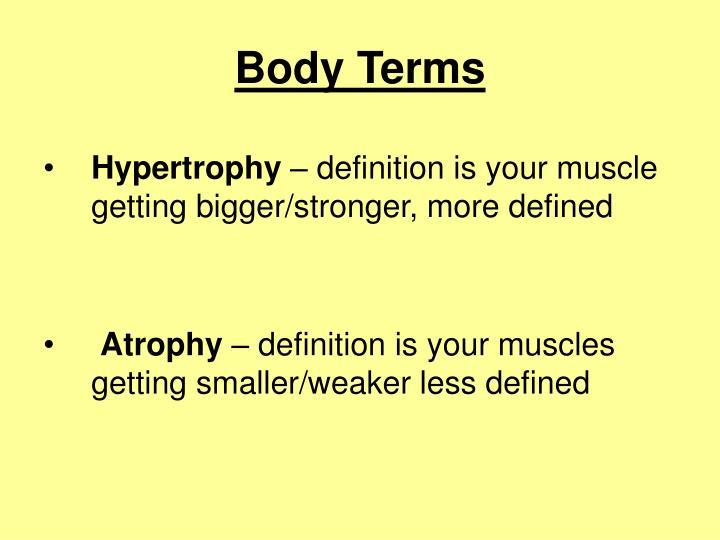 Body Terms
