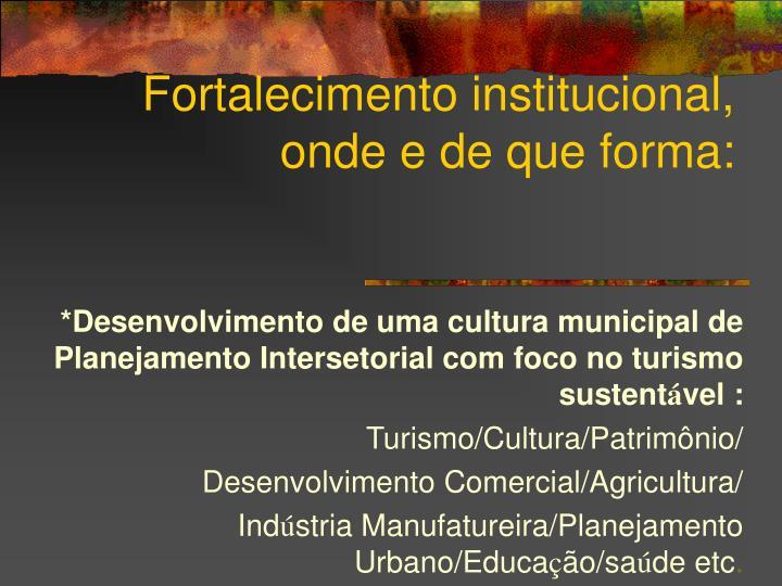 Fortalecimento institucional, onde e de que forma: