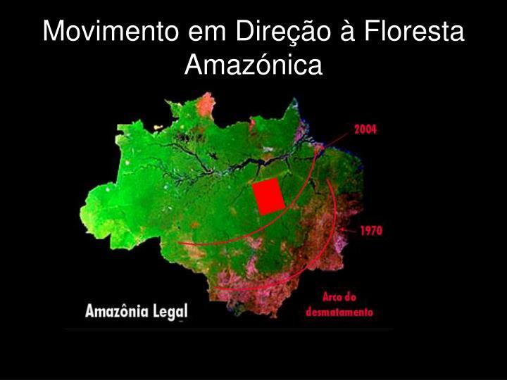 Movimento em Direção à Floresta Amazónica