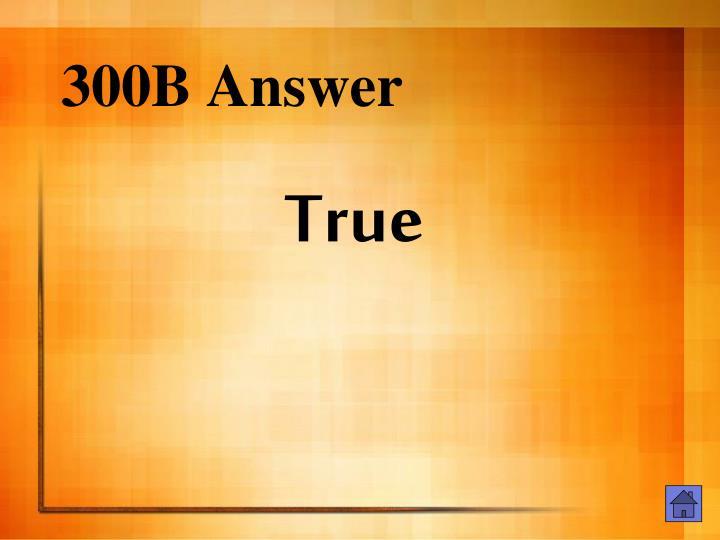 300B Answer