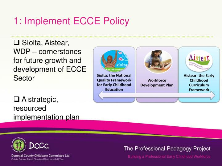 1: Implement ECCE Policy