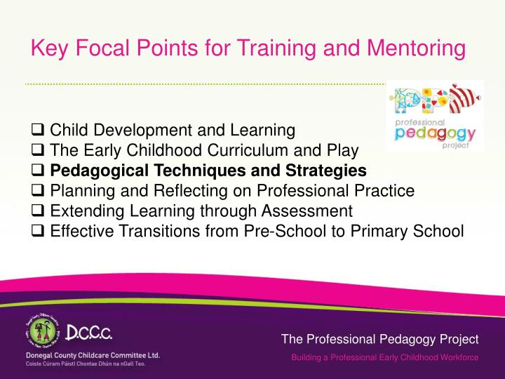 Key Focal Points for Training and Mentoring