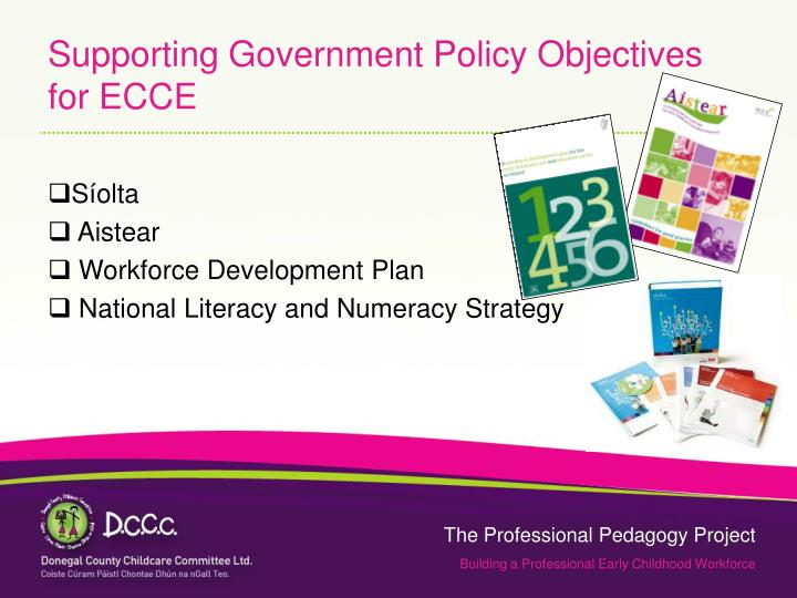 Supporting Government Policy Objectives