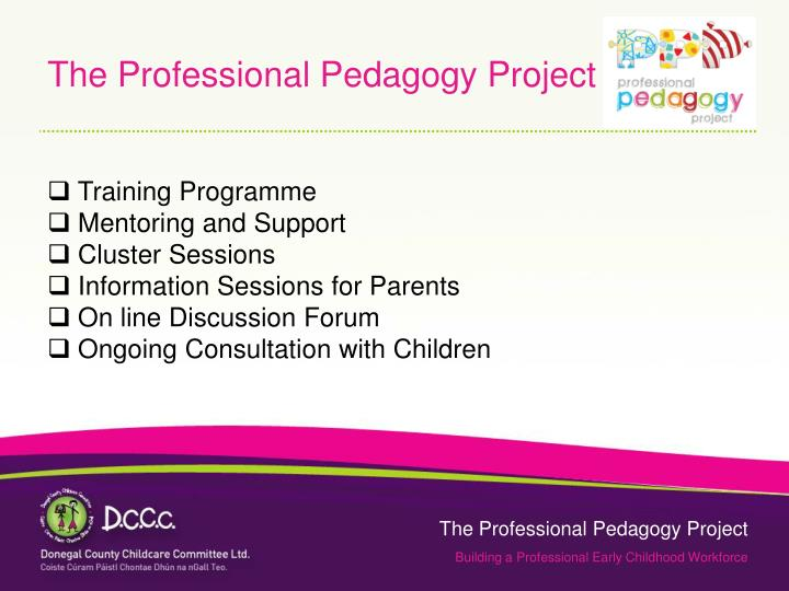The Professional Pedagogy Project