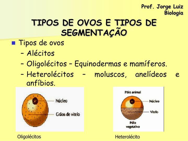 Oligolécitos