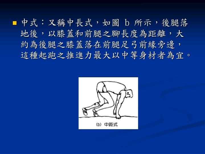 中式:又稱中長式,如圖