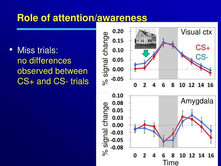 Role of attention/awareness
