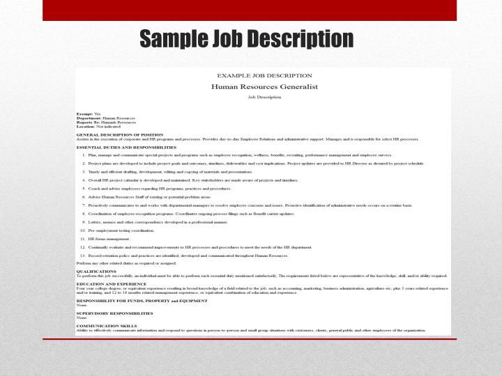 Sample Job Description