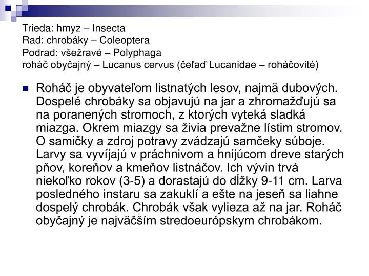 Trieda: hmyz – Insecta