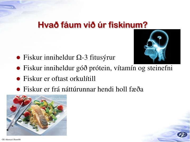 Hvað fáum við úr fiskinum?