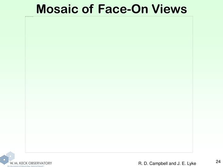 Mosaic of Face-On Views