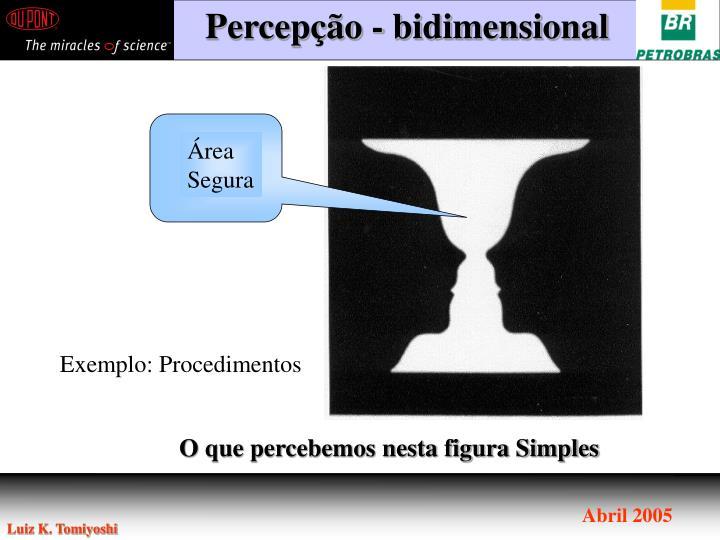 Percepção - bidimensional