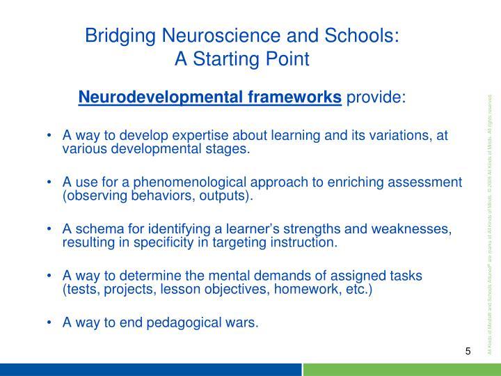 Neurodevelopmental frameworks