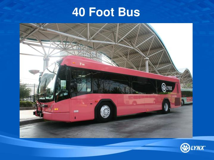 40 Foot Bus