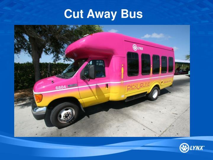 Cut Away Bus