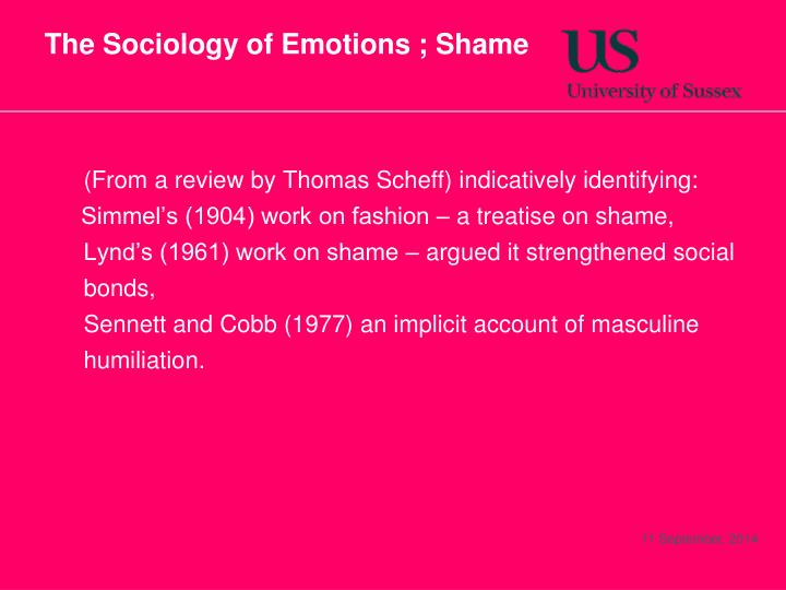 The Sociology of Emotions ; Shame