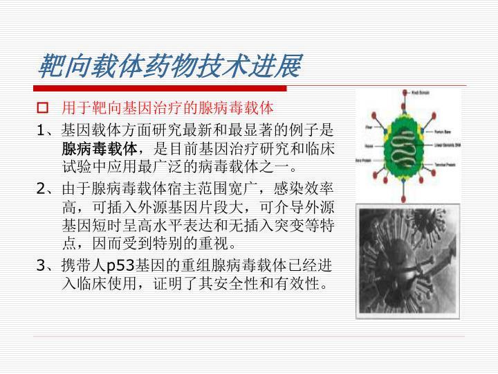 用于靶向基因治疗的腺病毒载体
