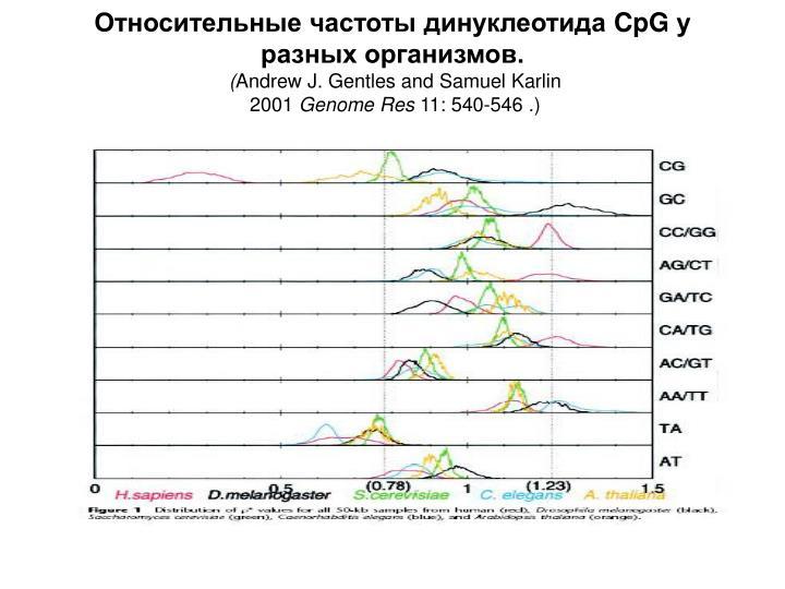 Относительные частоты динуклеотида