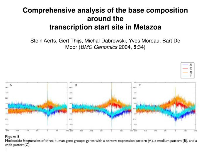 Comprehensive analysis of the base composition around the