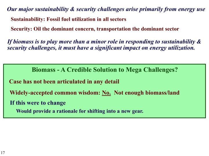 Biomass - A Credible Solution to Mega Challenges?