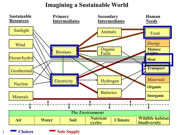 Imagining a Sustainable World