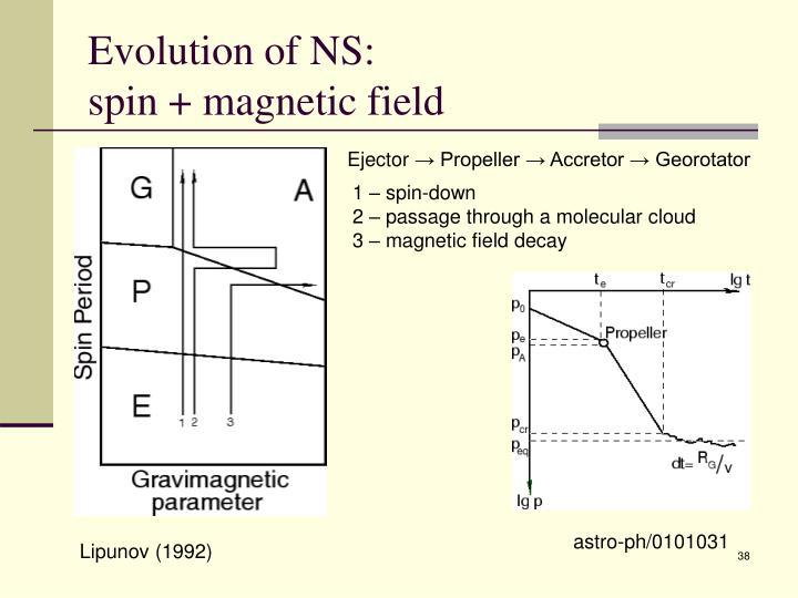 Evolution of NS: