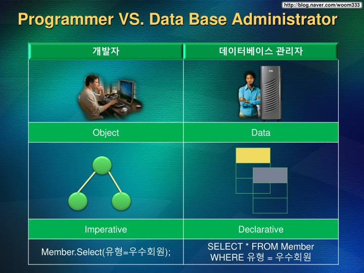 Programmer vs data base administrator