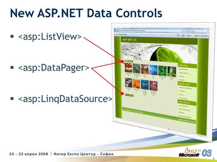 New ASP.NET Data Controls