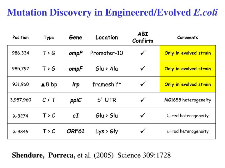Mutation Discovery in Engineered/Evolved