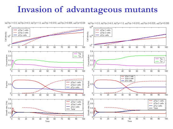 Invasion of advantageous mutants