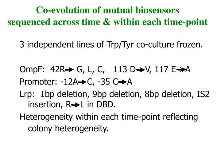 Co-evolution of mutual biosensors
