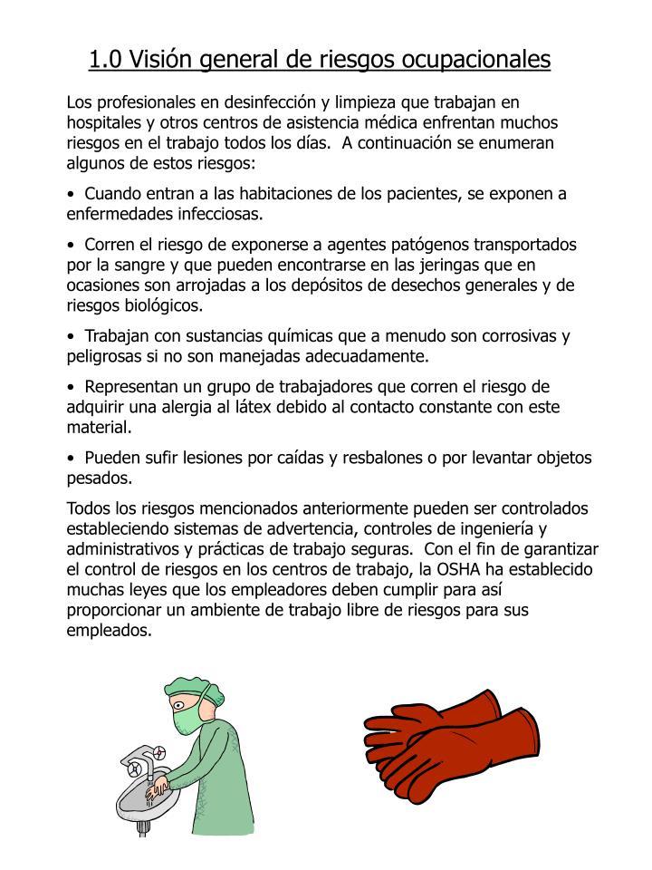 1.0 Visión general de riesgos ocupacionales
