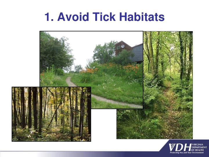 1. Avoid Tick Habitats