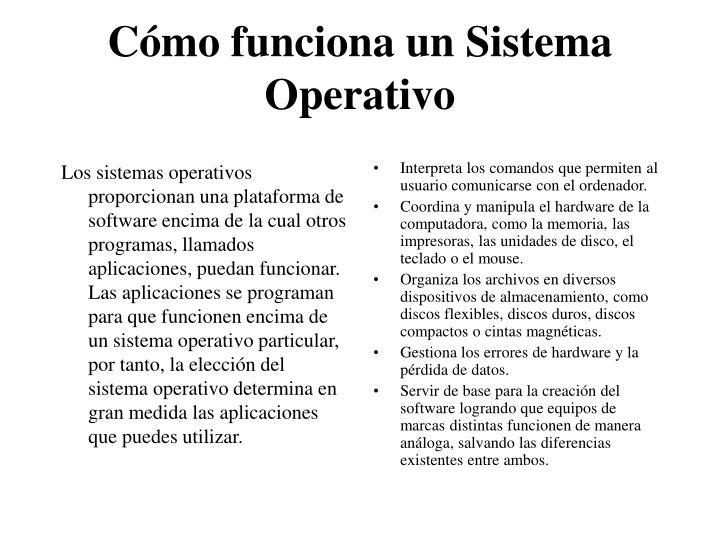 Los sistemas operativos proporcionan una plataforma de software encima de la cual otros programas, llamados aplicaciones, puedan funcionar. Las aplicaciones se programan para que funcionen encima de un sistema operativo particular, por tanto, la elección del sistema operativo determina en gran medida las aplicaciones que puedes utilizar.