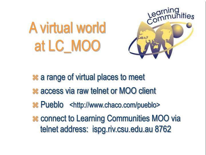 A virtual world