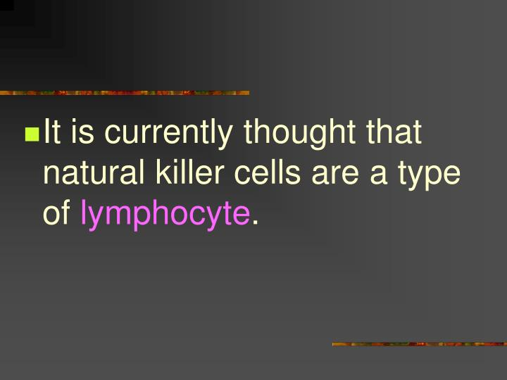 It is currently thought that natural killer cells are a type of