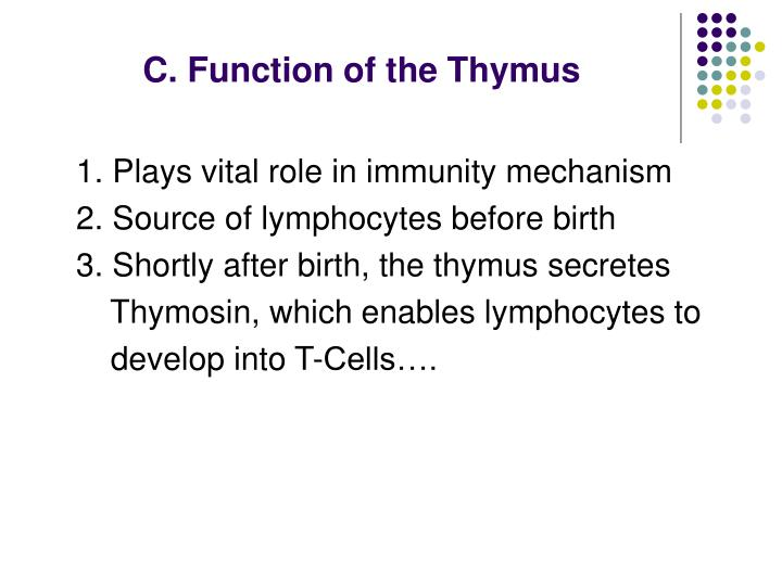 C. Function of the Thymus