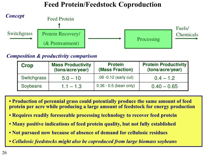 Feed Protein/Feedstock Coproduction