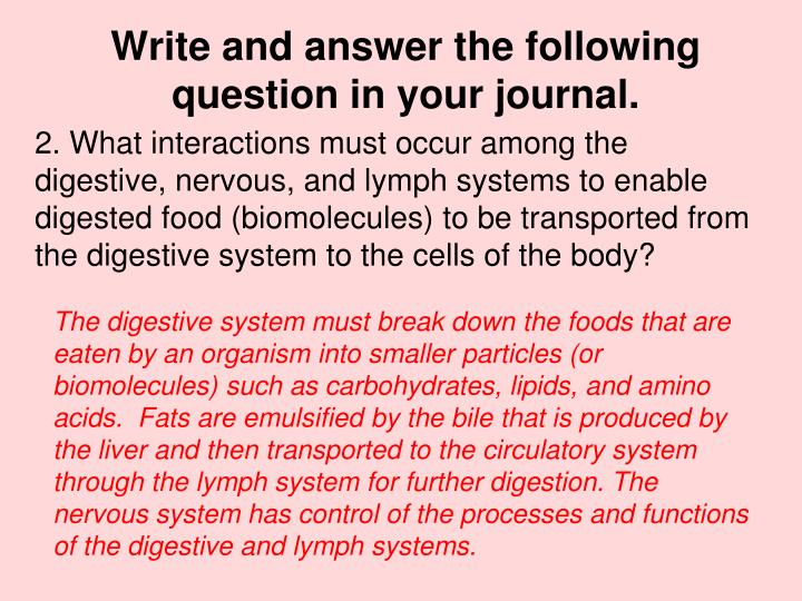 Write and answer the following question in your journal.