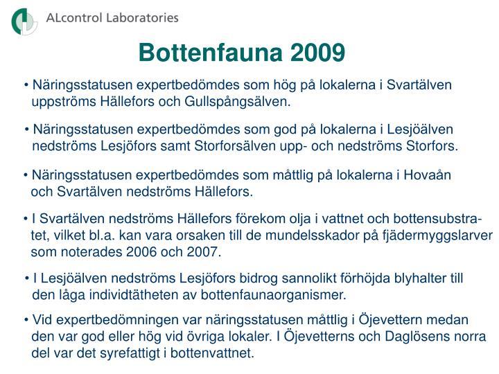 Bottenfauna 2009