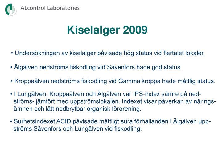 Kiselalger 2009