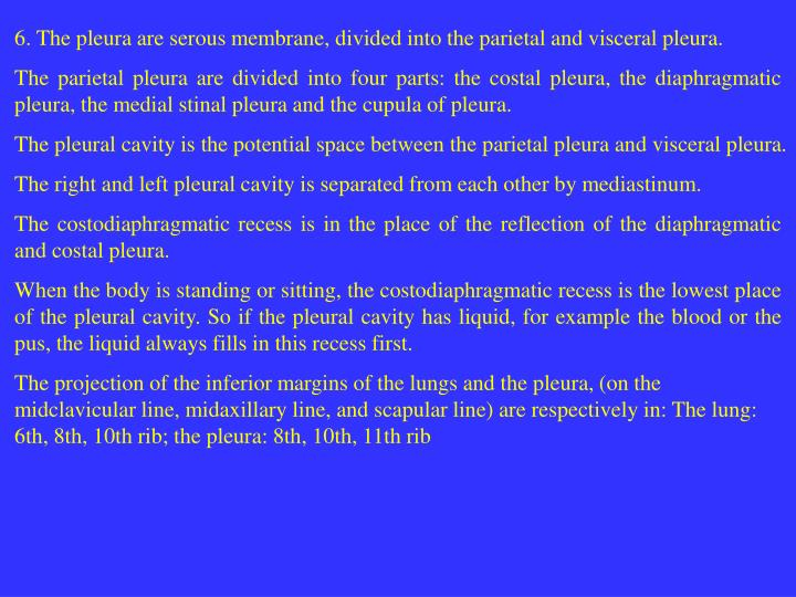 6. The pleura are serous membrane, divided into the parietal and visceral pleura.