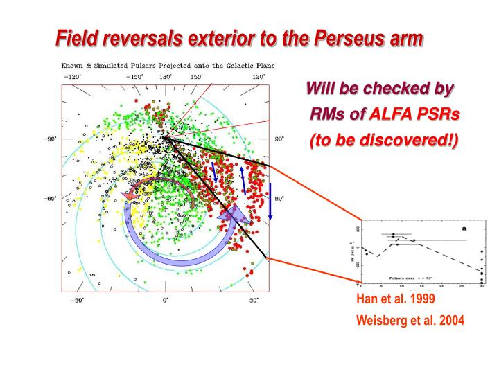 Field reversals exterior to the Perseus arm