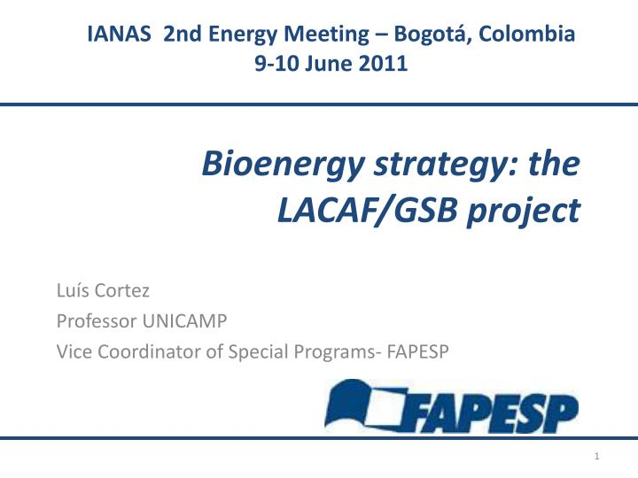 Bioenergy strategy the lacaf gsb project