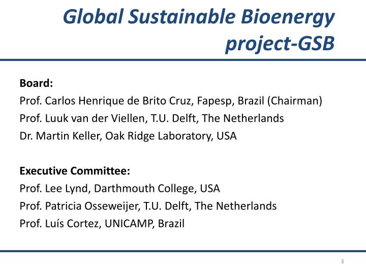 Global sustainable bioenergy project gsb